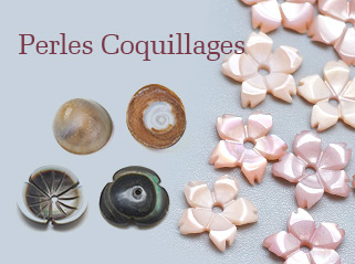 Perles Coquillages